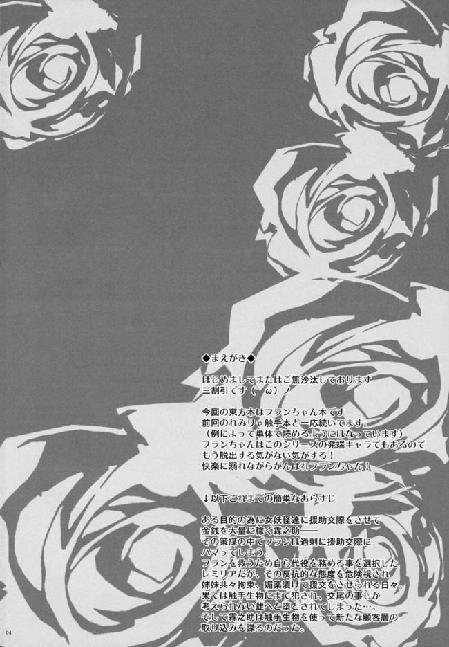 禁断の触手生物で何度もイカされて堕とされてしまうw【東方 エロ漫画・エロ同人】 (3)
