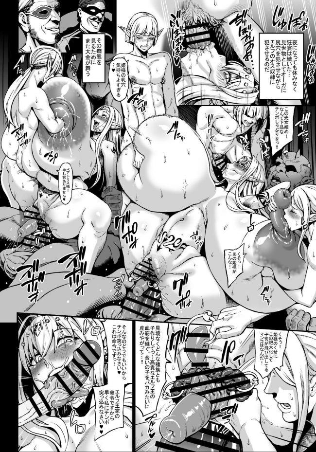 【エロ同人誌】国を乗っ取られたエルフ国の妃と姫が獣姦や異種姦でボテ腹妊娠wwww【青豆腐 エロ漫画】 (17)